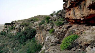 Photo of محمية ومنتزه مسلاته الوطني الشعافيين